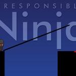 Irresponsible ninja